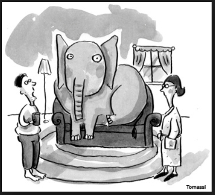 elephant_couch