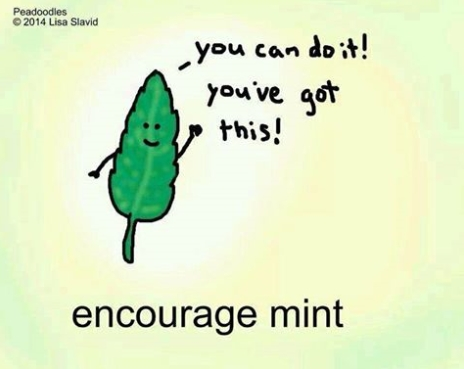 encourage_mint