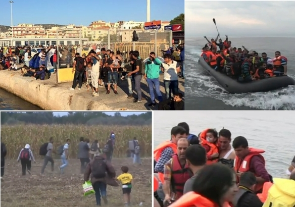 refugees_collage